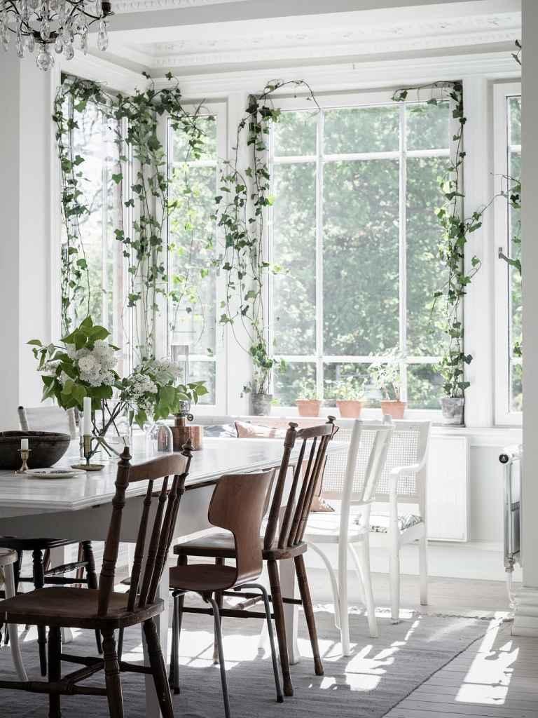 hangplantten bij het raam