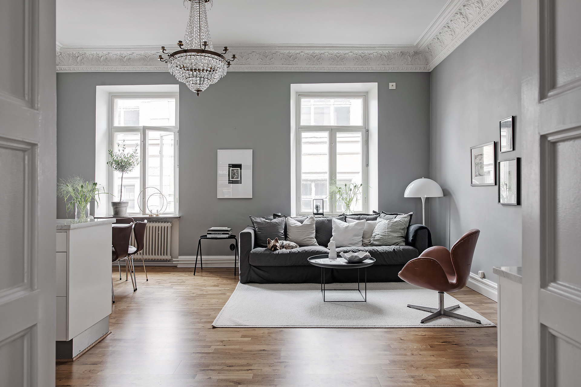 Beautiful and cozy home in grey coco lapine design for Pareti sala colorate