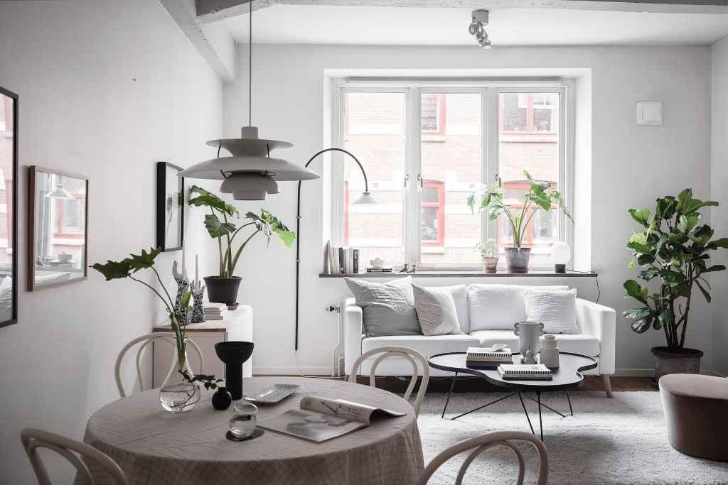 Cozy living kitchen