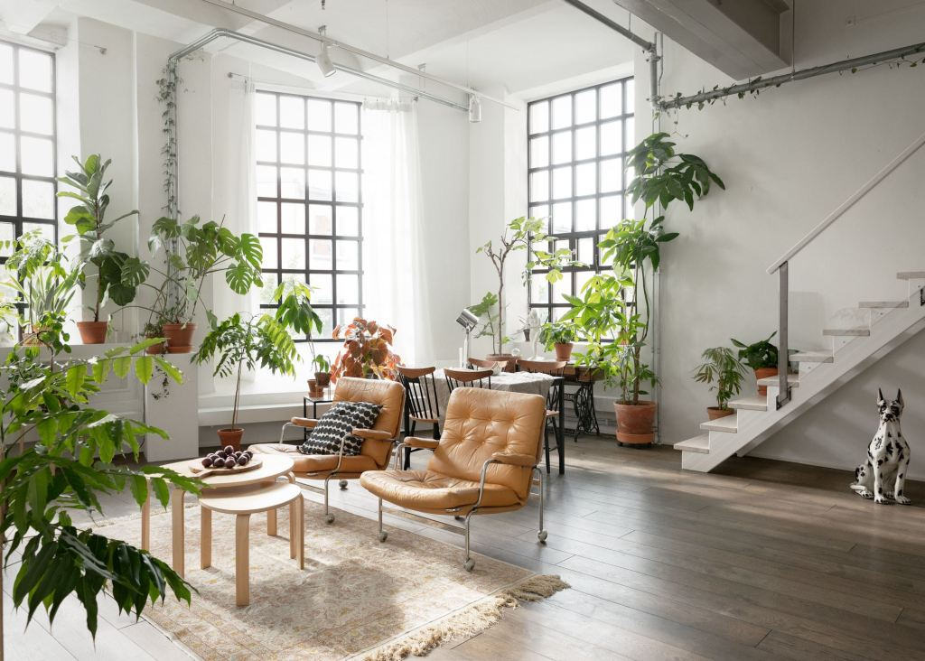 Loft home decorated with plants