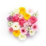 花言葉で感謝や尊敬を!親や先生に「ありがとう」の意味の花を春夏秋冬別に紹介!