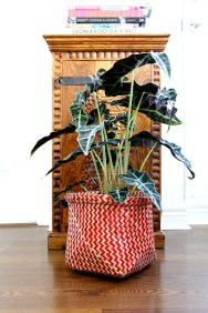 ~ Handmade basket from West Elm I had to display while being used as a plant pot ~