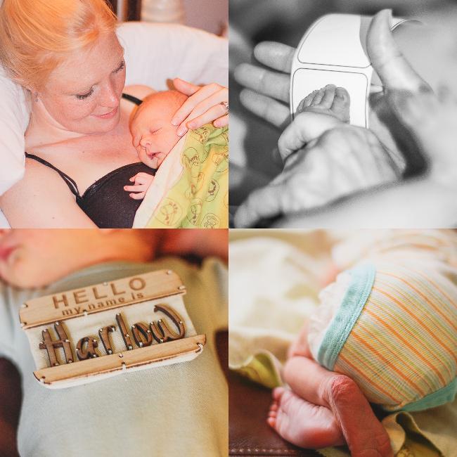 born harlow