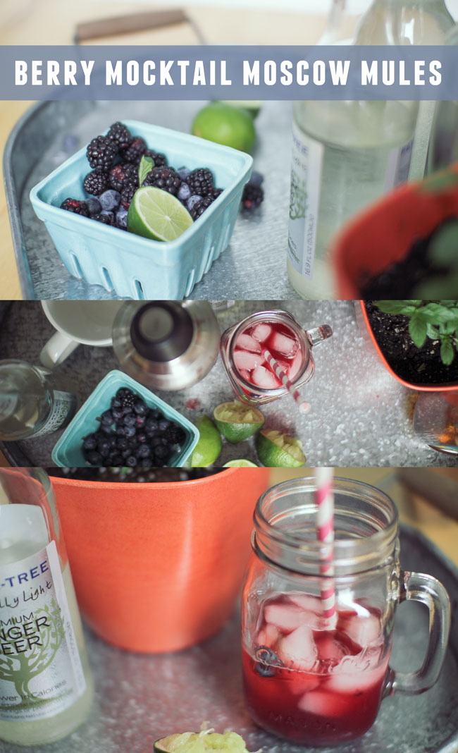 Berry-Mocktail-Mule-Recipe