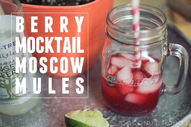 berry-mocktail-moscow-mule