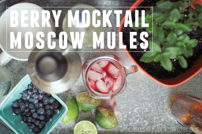 berry-mocktail-moscow-mule2