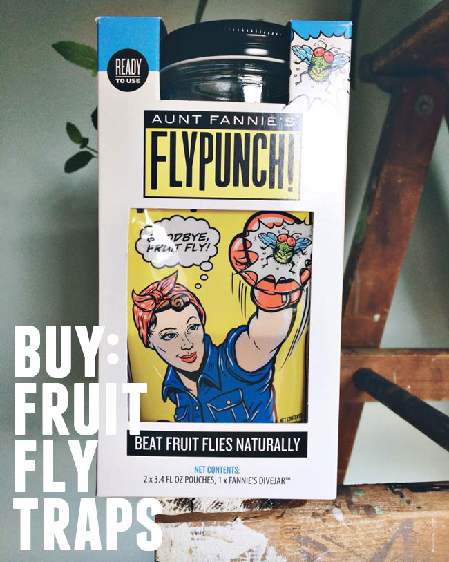 buy: Fruit Fly Traps