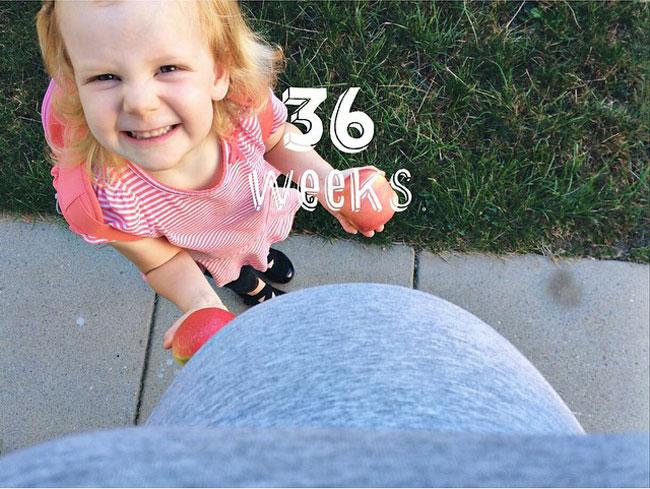 36-weeks