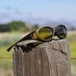 Fitover sunglasses by Live Eyewear