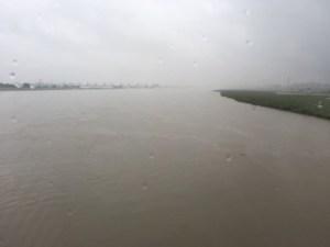 長良川の様子