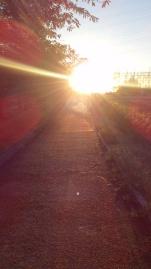 光の道.JPG