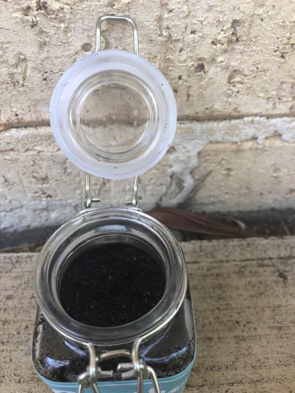 coffee detox scrub