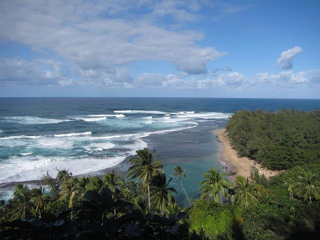 ハワイでレンタカーを借りよう