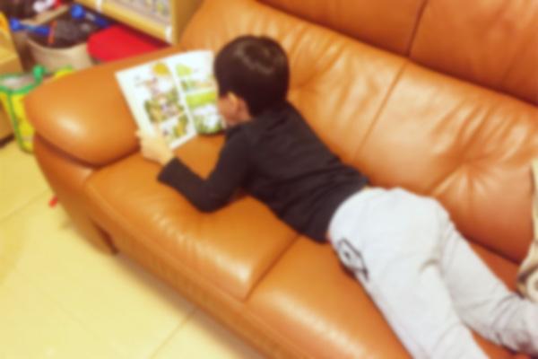 小学一年生男児(長男)が最近すきな本(プレゼントの参考に!)