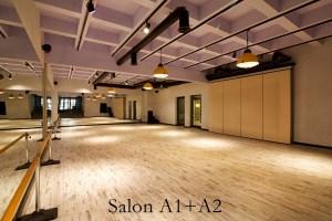 Latino Dans Stüdyosu Ümitköy Şubesi Salon 1+2.3