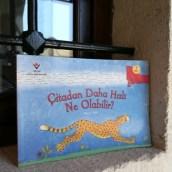 Çitadan Daha Hızlı Ne Olabilir?