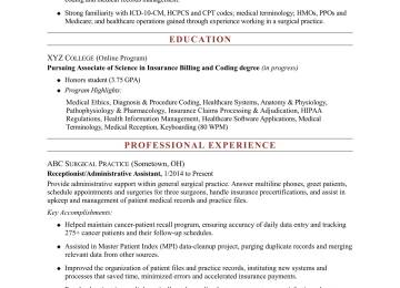 Seo Analyst Cover Letter | Application Support Analyst Sample Resume ...