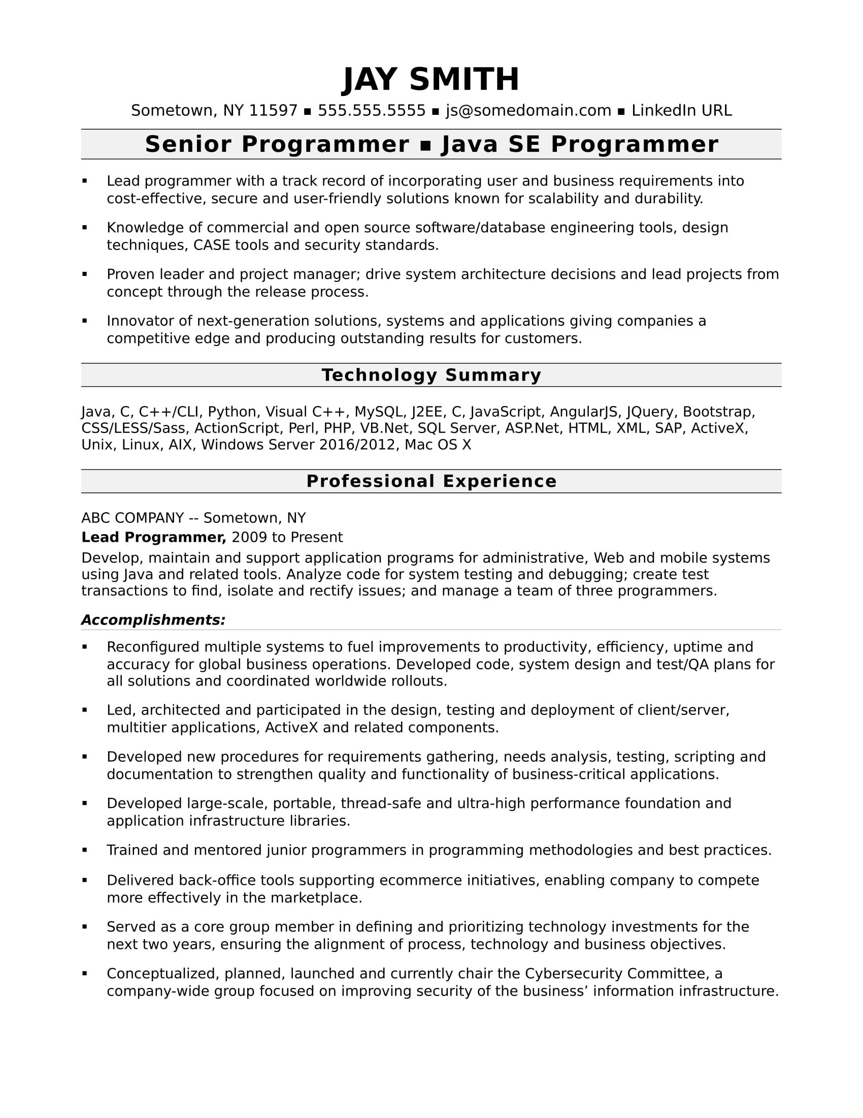 Resume Layout Examples Sample Resume For An Experienced Computer Programmer Monster