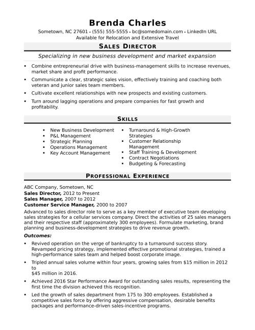 small resolution of sample resume for a sales director