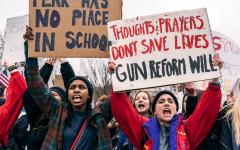 Could protest curb school violence?
