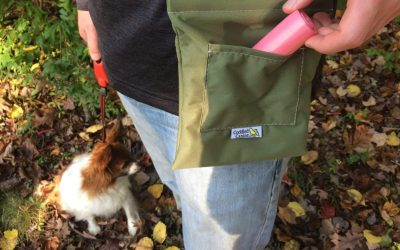 How to Always Be Prepared for Dog Poop