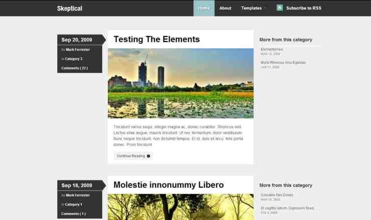 Teme WordPress 2011 - Skeptical