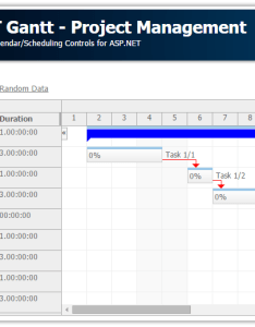 Asp gantt project managementg also chart tutorial sql server  vb daypilot code rh codepilot