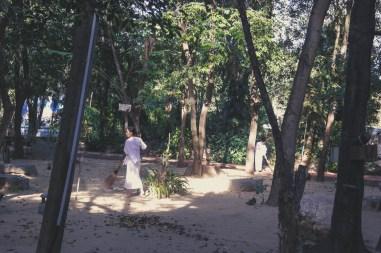 Ayutthaya - Wat Maheyong