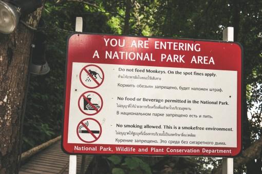 Monkey Trail