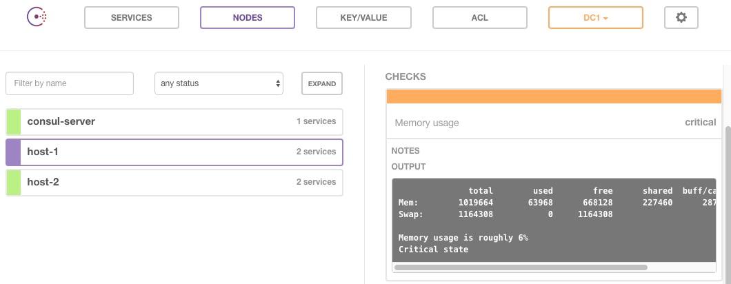 Consul host memory usage critical