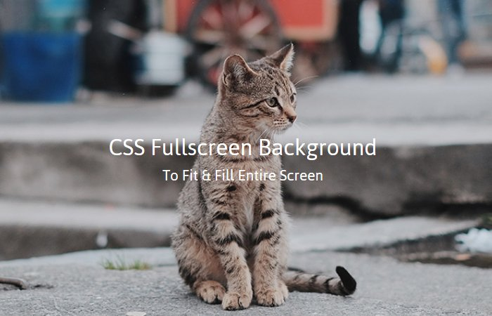 How to Make Responsive Fullscreen Background Images