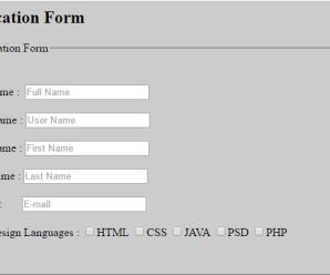How to Create Application Table Form By HTML
