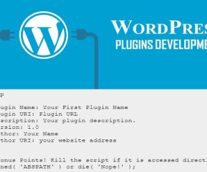 How to Start Coding for Create WP Plugin