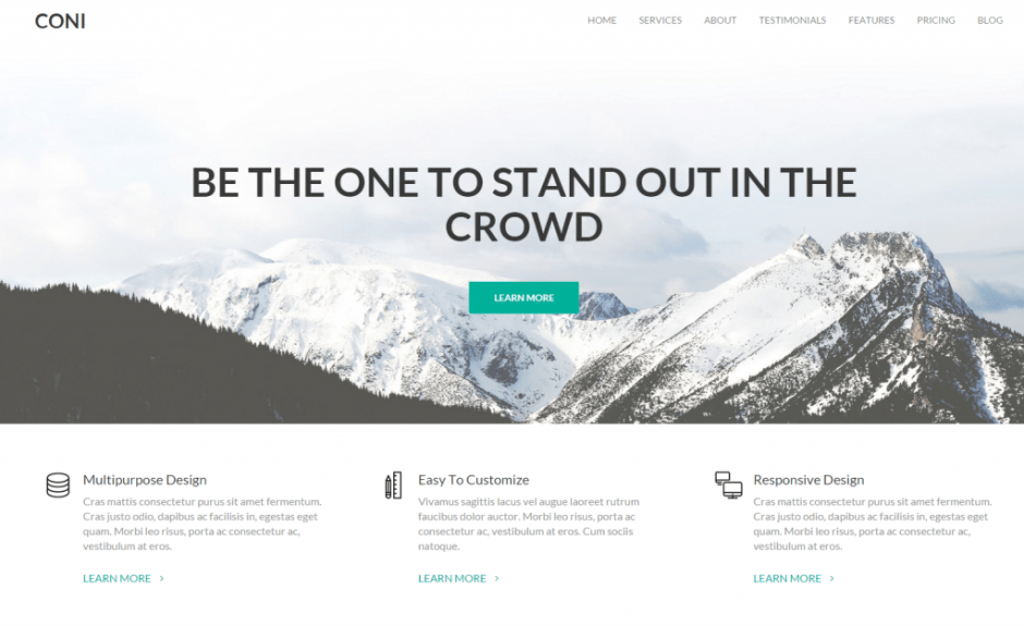 Coni – WordPress Theme