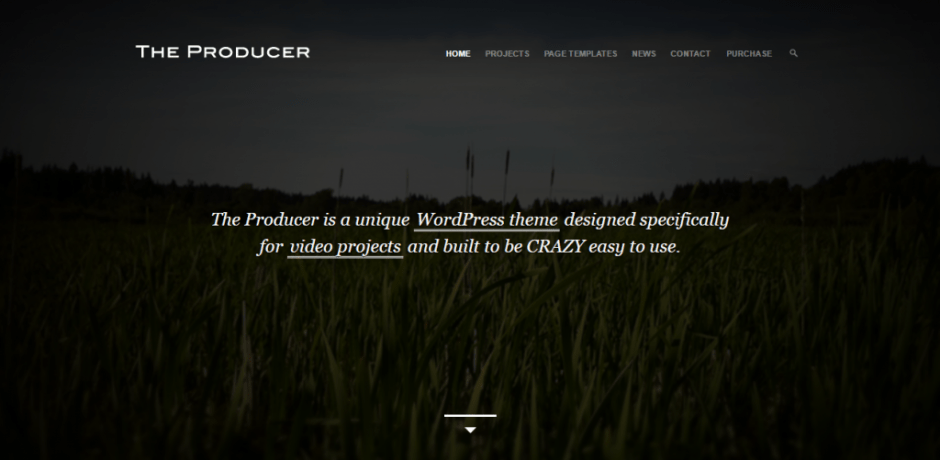 the-producer-just-another-the-molitor-themes-site