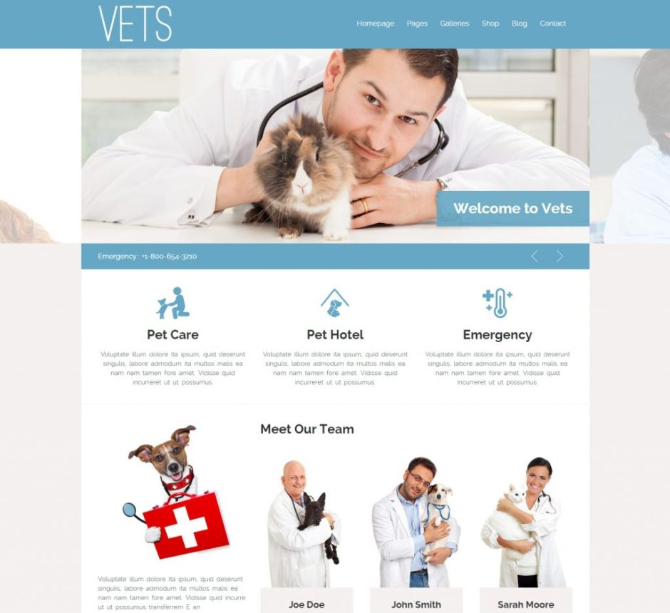 VETS Veterinary Medical Health Clinic Theme WordPress Theme-compressed