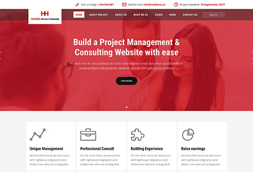 Handel Consulting WordPress Theme