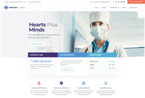 Regn Medical WordPress Theme