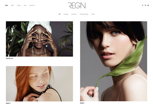 Regn Portfolio WordPress Theme