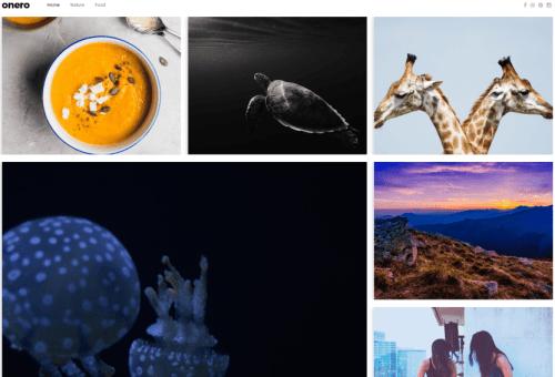Onero Photo Gallery WordPress Theme