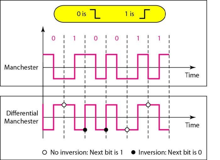 line-coding5