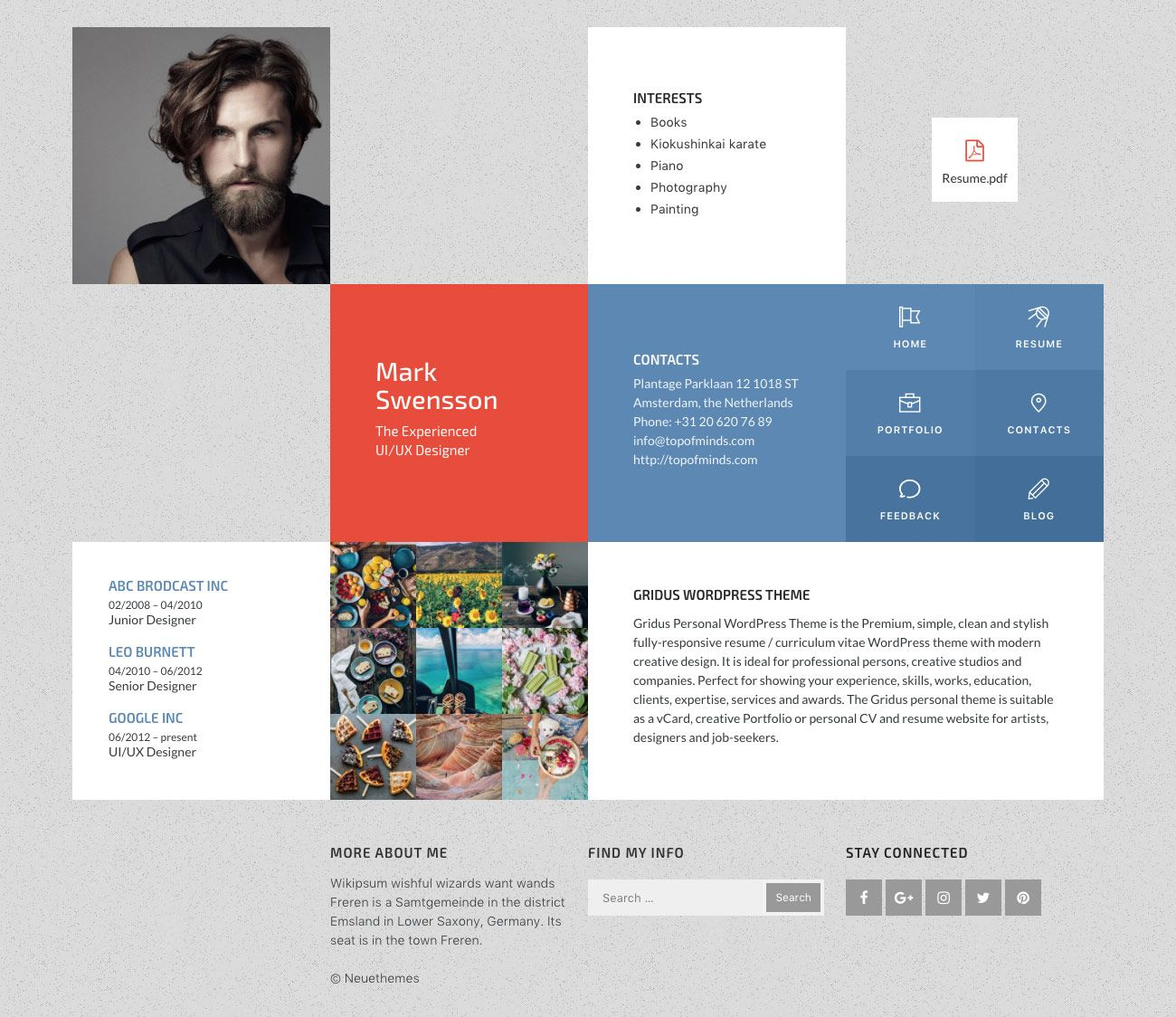 Wordpress Resume Themes Mark Resume Portfolio Wordpress Theme Wordpress Resume