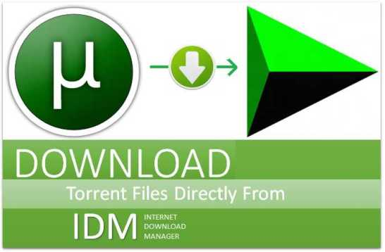 How-To-Download-Torrent-File-Using-IDM-For-Free