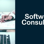 What's a Software Consultant?