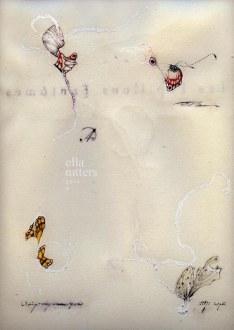 Papillons Fantômes page 2