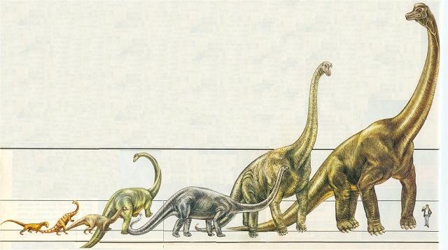Tierra se recuperó rápido de asteroide que mató dinosaurios