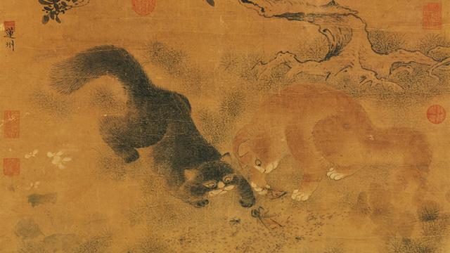 Gato-chino-02