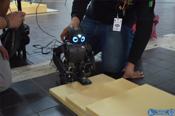 robo-mex6