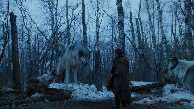 Game Of Thrones, Temporada Ocho, Arya, Nymeria