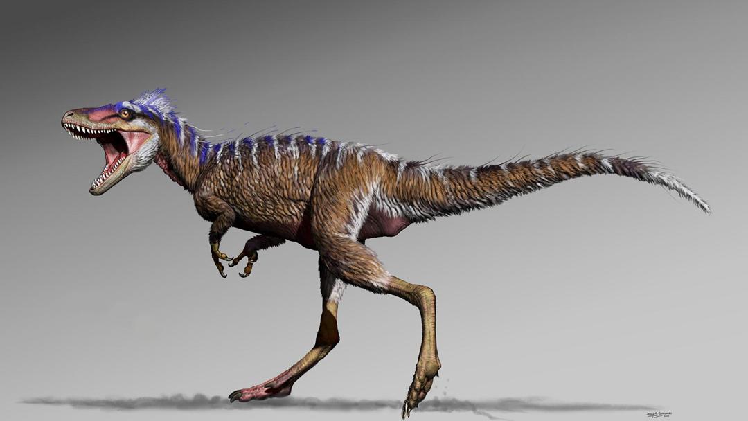 Tiranosaurio Rex, Moros Intrepidus, Ancestro, Miniatura